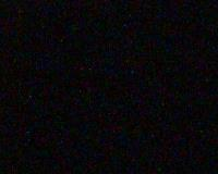 WatchTheDeer.com Live Bear Camera